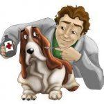 Veterinarian helping sick dog