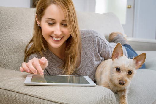 lady with dog using the internet
