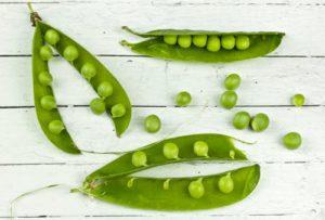 Nature's Recipe Dog Food - peas