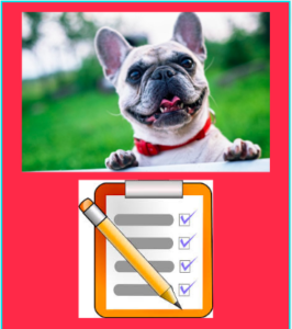 dog and checklist