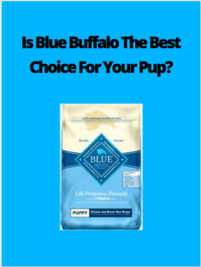 Blue Buffalo Puppy Food Review