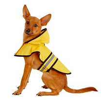 Best Dog Rain Gear - Dog Raincoat